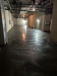 Затирка бетона с топпингом лопастями, фото 2